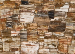 кварцевый агломерат CAESARSTONE CONCETTO 8331 Petrified Wood Classic